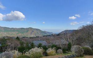 箱根強羅別荘地の景観 (後方は相模湾)