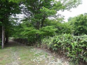 札幌市近郊のリゾート用売り土地事例