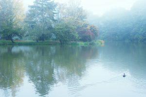 1. 霧にかすむ塩沢湖