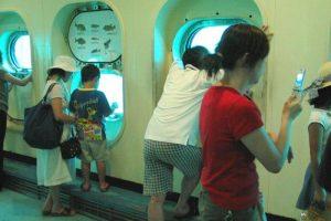 海面下の観賞窓から魚たちを観察