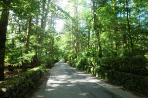 旧軽井沢の別荘地林道