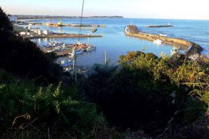 八幡岬の北側に開ける大原漁港