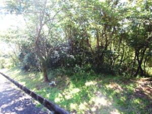 事例3(静岡・三島市)