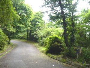 事例7(神奈川・箱根町6)