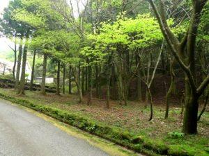 事例8(神奈川・箱根町7)