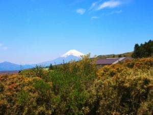事例9(静岡・三島市2)