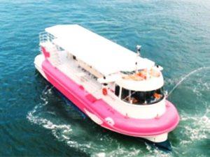 海中の様子を観賞できる観光船