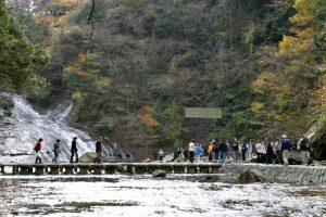 養老渓谷の散策を楽しむ観光者