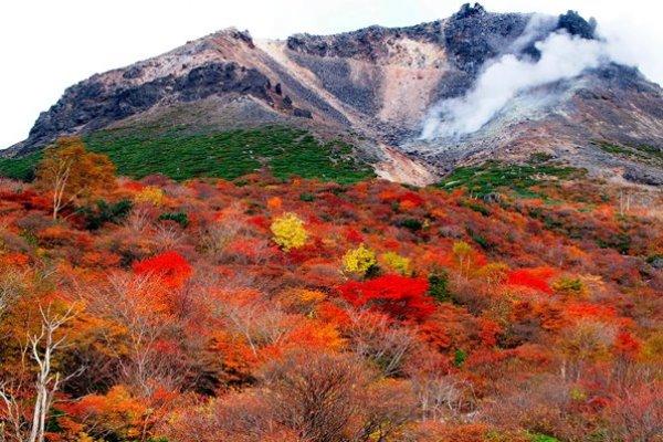 紅葉が見事な茶臼岳頂上付近(姥ヶ平)