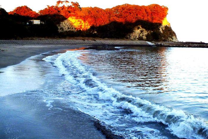 丹ヶ浦側から見た紅葉の八幡岬