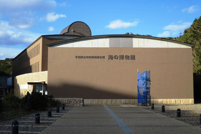 県立中央博物館分館・海の博物館