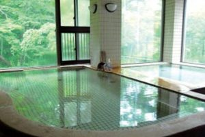 新鹿沢温泉鹿の湯の半露天風呂