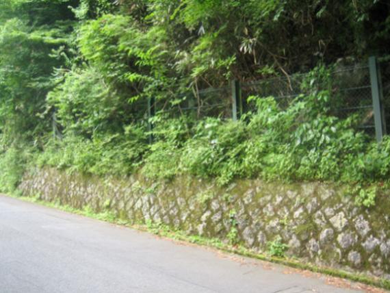 事例1(神奈川・箱根町1)