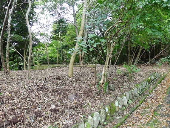 事例2(神奈川・箱根町2)