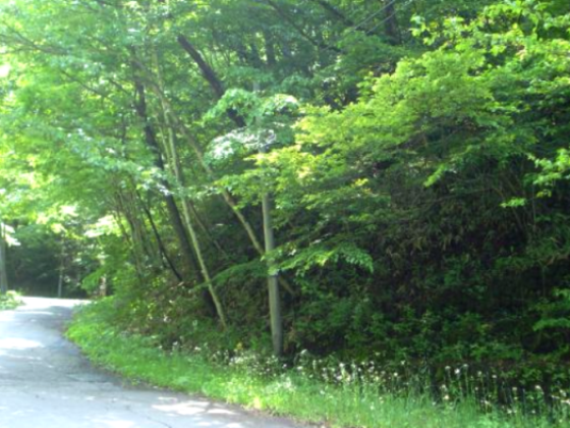 事例1(長野・軽井沢町)