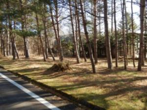 事例5(長野・軽井沢町5)